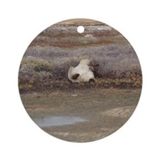 P Bear (55)10x10-gt Round Ornament