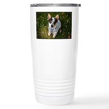 nom1 Travel Coffee Mug