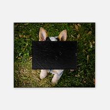 nom1 Picture Frame