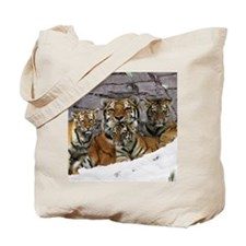 toma and cubs Tote Bag