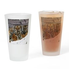 toma and cubs Drinking Glass