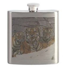 toma and cubs Flask