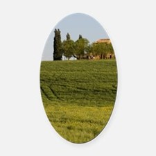 Countryside near Pienza. Val d'Orc Oval Car Magnet