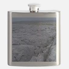 UK, Ireland, County Clare, The Burren Flask