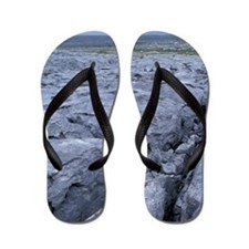 UK, Ireland, County Clare, The Burren Flip Flops