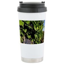 Greve. Chianti grapes from the  Travel Mug