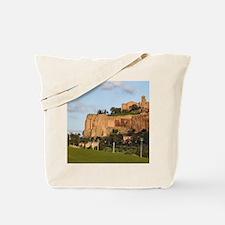 Orvieto, vineyard, Umbria, Italy Tote Bag