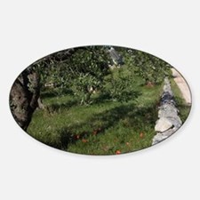 Bicycling on country lane with a tr Sticker (Oval)