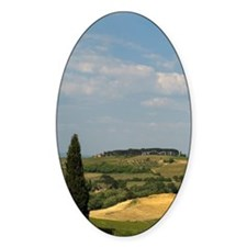 Countryside near Montepulciano, Val Decal