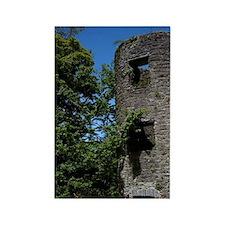 Blarney Castle ruin in thethe cas Rectangle Magnet
