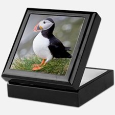Shown here in breeding colorsc seabir Keepsake Box