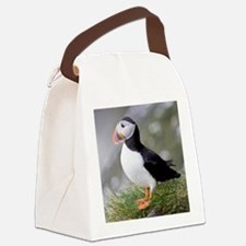 Shown here in breeding colorsc se Canvas Lunch Bag