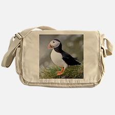 Shown here in breeding colorsc seabi Messenger Bag