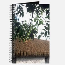 Life in Ireland straw huts traditional usa Journal