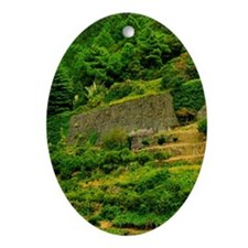Italy, Tuscany. The Cinque Terra ter Oval Ornament