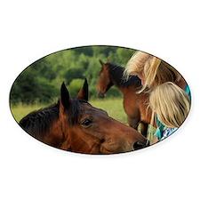 Enniskerry. Horse encounter near Po Decal