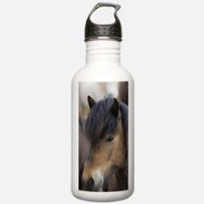 Icelandic horses, Skag Sports Water Bottle