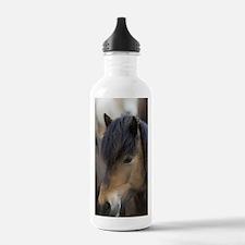 Icelandic horses, Skag Water Bottle