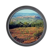 Vineyards frame the charming hilltop to Wall Clock