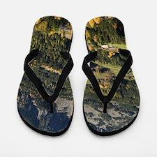Italy, Trentino - Alto Adige, Bolzano p Flip Flops