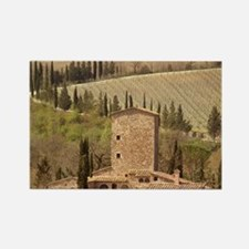 Italy, a Tuscan vineyard Rectangle Magnet