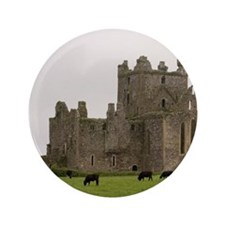 "Dunbrody Abbey, Dumbrody, County Wexfo 3.5"" Button"