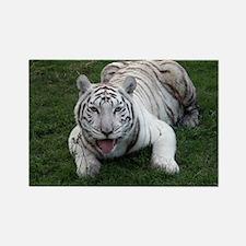 White Tiger 1 Rectangle Magnet