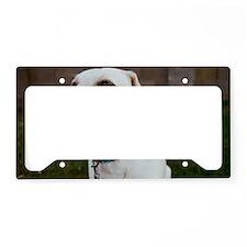 goodky2 License Plate Holder