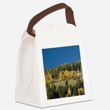 Italy, Trentino - Alto Adige, Bol Canvas Lunch Bag