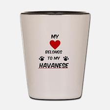 Havanese Shot Glass