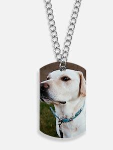 posterlg Dog Tags