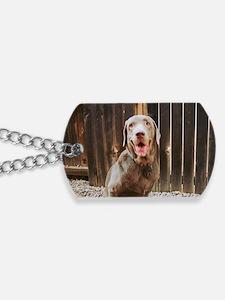 photoshoot1 Dog Tags