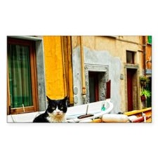 Cinque Terre. Village cat guar Decal