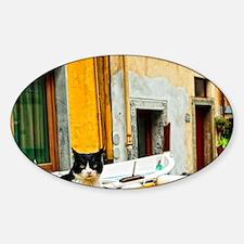 Cinque Terre. Village cat guards on Decal