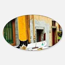 Cinque Terre. Village cat guards on Sticker (Oval)