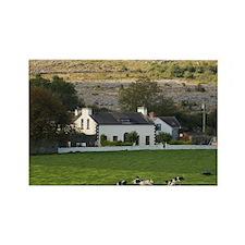 Farm, Ireland, Countryside, Cows, Rectangle Magnet