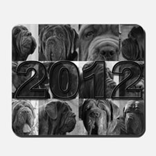 cover2012 copy Mousepad