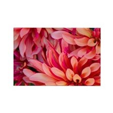 Bright colorful flowers at the Bl Rectangle Magnet