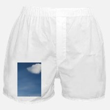 Tromso. Gateway to the Arctic located Boxer Shorts