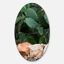 Italy, Puglia, Cisternino, Stone Wa Sticker (Oval)