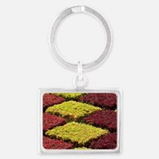 Founded in 1960. Colorful forma Landscape Keychain