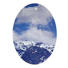 Norway, Vesteralen Islands, Kleiva.  Oval Ornament