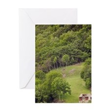 Building along pasture in Sogne Fjor Greeting Card