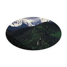 Zakopane Skip Chalets and Tatra Mo Oval Car Magnet