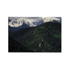 Zakopane Skip Chalets and Tatra M Rectangle Magnet