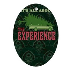 The Experience book Oval Ornament