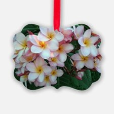 Pretty Pink Plumeria Flowers Ornament