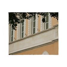 Portside Building DetailsSyracuse):  Throw Blanket