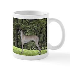 Sloughi in Central Park Mug