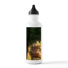 Netherlands, Holland,  Sports Water Bottle